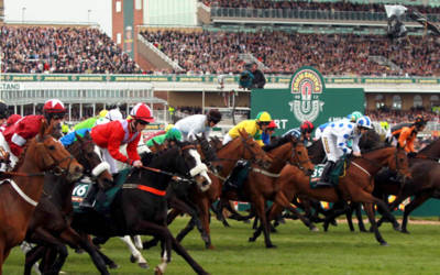 Are You Looking For Minibus Hire and Coach Hire for Horse Racing Fixtures?